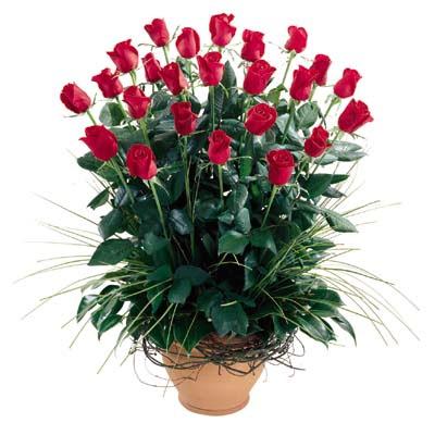 Adıyaman uluslararası çiçek gönderme  10 adet kirmizi gül cam yada mika vazo