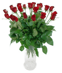 Adıyaman çiçekçi telefonları  11 adet kimizi gülün ihtisami cam yada mika vazo modeli