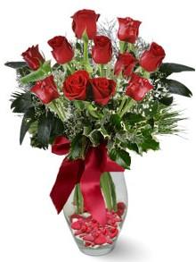 9 adet gül  Adıyaman internetten çiçek satışı  kirmizi gül