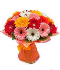 Renkli gerbera buketi  Adıyaman anneler günü çiçek yolla