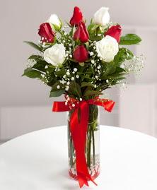 5 kırmızı 4 beyaz gül vazoda  Adıyaman cicekciler , cicek siparisi
