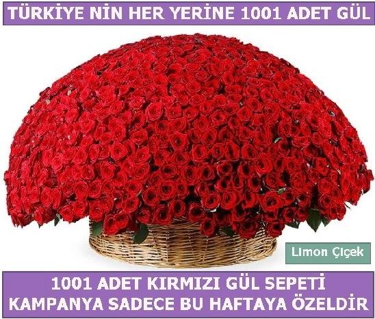1001 Adet kırmızı gül Bu haftaya özel  Adıyaman İnternetten çiçek siparişi