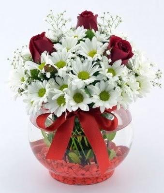 Fanusta 3 Gül ve Papatya  Adıyaman internetten çiçek satışı