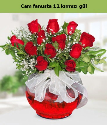 Cam içerisinde 12 adet kırmızı gül  Adıyaman internetten çiçek satışı