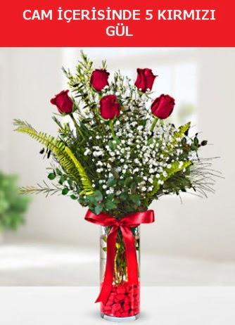 Cam içerisinde 5 adet kırmızı gül  Adıyaman çiçek siparişi sitesi