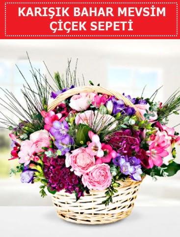 Karışık mevsim bahar çiçekleri  Adıyaman ucuz çiçek gönder