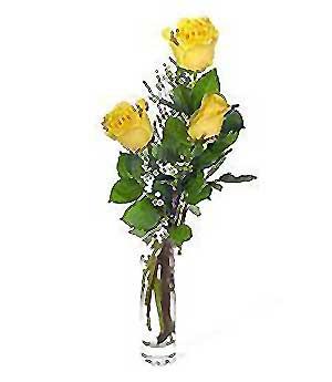 Adıyaman internetten çiçek siparişi  3 adet kalite cam yada mika vazo gül