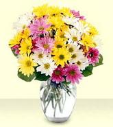 Adıyaman internetten çiçek siparişi  mevsim çiçekleri mika yada cam vazo