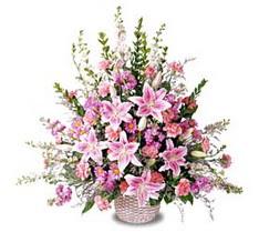 Adıyaman çiçek siparişi sitesi  Tanzim mevsim çiçeklerinden çiçek modeli