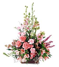 Adıyaman ucuz çiçek gönder  mevsim çiçeklerinden özel
