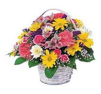 Adıyaman çiçek , çiçekçi , çiçekçilik  mevsim çiçekleri sepeti özel