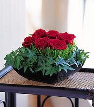 Adıyaman çiçek siparişi sitesi  10 adet kare mika yada cam vazoda gül tanzim