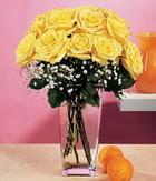 Adıyaman internetten çiçek satışı  9 adet sari güllerden cam yada mika vazo
