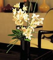 Adıyaman çiçekçiler  cam yada mika vazo içerisinde dal orkide