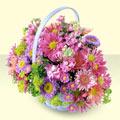 Adıyaman yurtiçi ve yurtdışı çiçek siparişi  bir sepet dolusu kir çiçegi  Adıyaman çiçek gönderme sitemiz güvenlidir
