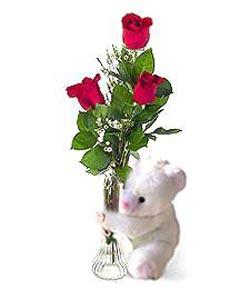 oyuncak ve 3 adet gül  Adıyaman çiçek siparişi sitesi
