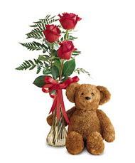 oyuncak ve güller tanzim   Adıyaman çiçekçi telefonları