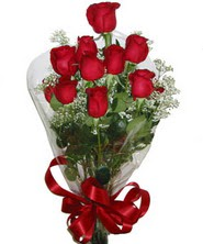 9 adet kaliteli kirmizi gül   Adıyaman online çiçekçi , çiçek siparişi