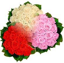 3 renkte gül seven sever   Adıyaman çiçek , çiçekçi , çiçekçilik