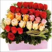 15 adet renkli gül ve cam   Adıyaman çiçekçi mağazası
