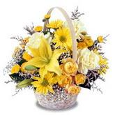 sadece sari çiçek sepeti   Adıyaman çiçek gönderme sitemiz güvenlidir