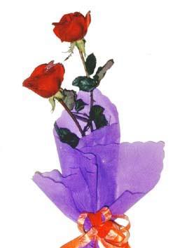 2  adet kirmizi gül buketi   Adıyaman çiçek , çiçekçi , çiçekçilik
