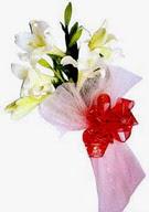 Adıyaman çiçek , çiçekçi , çiçekçilik  ince vazoda gerbera ve ayi