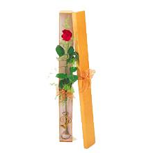 ince  kutuda  1  gül   Adıyaman çiçek yolla