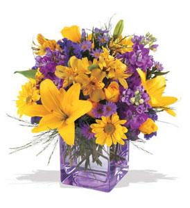 Adıyaman çiçek mağazası , çiçekçi adresleri  cam içerisinde kir çiçekleri demeti
