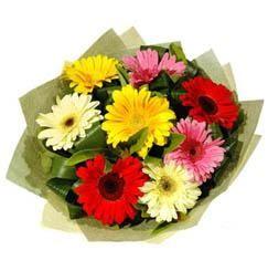 9 adet karisik gerbera demeti  Adıyaman çiçek mağazası , çiçekçi adresleri