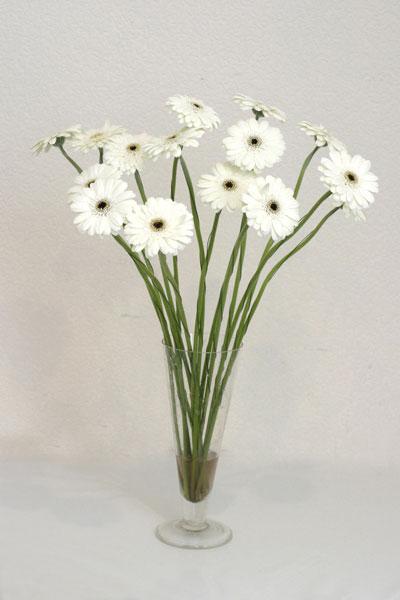 Adıyaman çiçek mağazası , çiçekçi adresleri  cam vazo içerisinde 17 adet sade gerbera