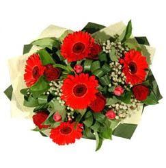 Adıyaman ucuz çiçek gönder   5 adet kirmizi gül 5 adet gerbera demeti