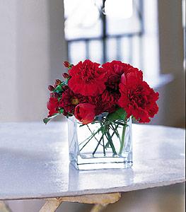 Adıyaman ucuz çiçek gönder  kirmizinin sihri cam içinde görsel sade çiçekler