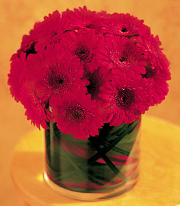 Adıyaman ucuz çiçek gönder  23 adet gerbera çiçegi sade ve sik cam içerisinde