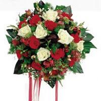 Adıyaman ucuz çiçek gönder  6 adet kirmizi 6 adet beyaz ve kir çiçekleri buket