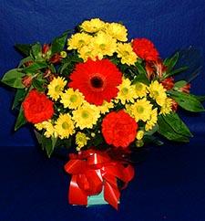 Adıyaman ucuz çiçek gönder  sade hos orta boy karisik demet çiçek