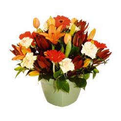 mevsim çiçeklerinden karma aranjman  Adıyaman çiçek yolla , çiçek gönder , çiçekçi