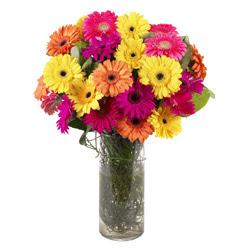 KARISIK GERBERALARDAN CAM VAZO TANZIMI  Adıyaman güvenli kaliteli hızlı çiçek