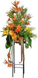 Adıyaman çiçek siparişi sitesi  perförje tanzimi dügün nikah ve açilislara