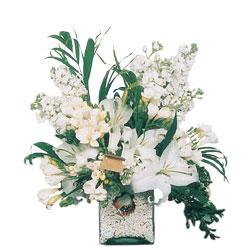 Adıyaman internetten çiçek siparişi  sadece beyazlardan olusmus mevsim cam yada mika tanzim