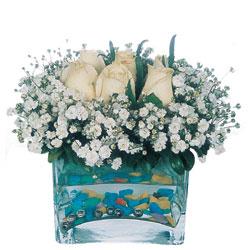 Adıyaman çiçekçi mağazası  mika yada cam içerisinde 7 adet beyaz gül