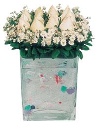 Adıyaman çiçekçi mağazası  7 adet beyaz gül cam yada mika vazo tanzim
