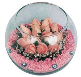 Adıyaman internetten çiçek satışı  cam fanus içerisinde 10 adet gül