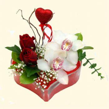 Adıyaman hediye sevgilime hediye çiçek  1 kandil orkide 5 adet kirmizi gül mika kalp