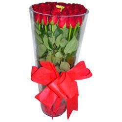 Adıyaman çiçek online çiçek siparişi  12 adet kirmizi gül cam yada mika vazo tanzim