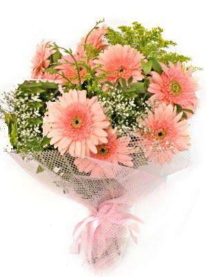 Adıyaman çiçek satışı  11 adet gerbera çiçegi buketi