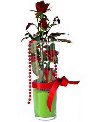 Adıyaman online çiçek gönderme sipariş  Cam yada mika içerisinde 9 adet kirmizi gül - sevdiklerinize özel