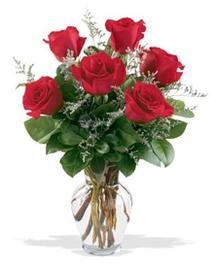Adıyaman çiçek gönderme sitemiz güvenlidir  7 adet kirmizi gül cam yada mika vazoda sevenlere