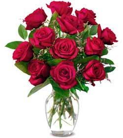 Adıyaman online çiçek gönderme sipariş  1 düzine kirmizi gül sevenlere özel vazo gülleri