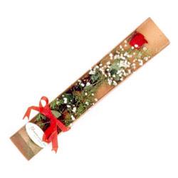 Adıyaman çiçek , çiçekçi , çiçekçilik  Kutuda tek 1 adet kirmizi gül çiçegi
